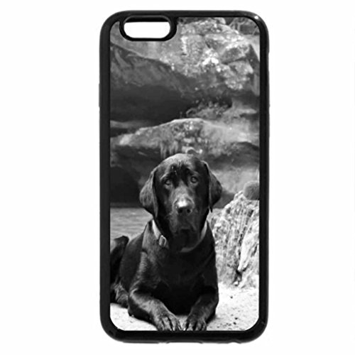 iPhone 6S Case, iPhone 6 Case (Black & White) - dog and cat