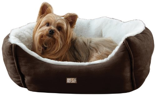 Animal Planet Micro Suede Pet Bed - Brown