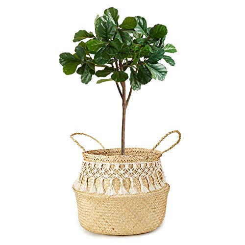 (Mkono Seagrass Plant Basket Indoor Planter Decorative Flower Pot Cover Up to 12 Inch Pot with Macrame Wrap, L)