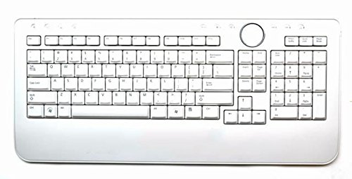 8c686b3cc4e Amazon.com: Dell Y853M Wireless White Keyboard: Computers & Accessories