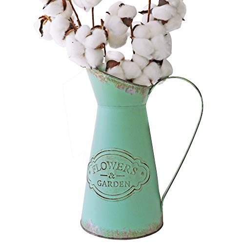 - HyFanStr French Style Metal Vases for Flowers Rustic Pitcher Plant Garden Decor