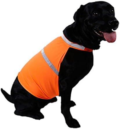 Pets Seguridad Fluorescente Luminoso para Mascotas Ropa Impermeable Ropa para Caza Senderismo Aquir Chaleco Reflectante de Seguridad para Perros Verde, L Footing y Entrenamiento