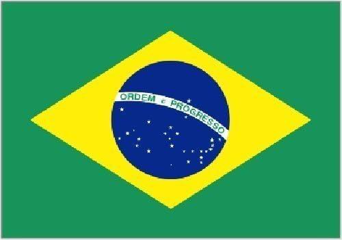 Gigante Brasil Brasileño - 8ft x 152cm Bandera Decoración: Amazon.es: Hogar