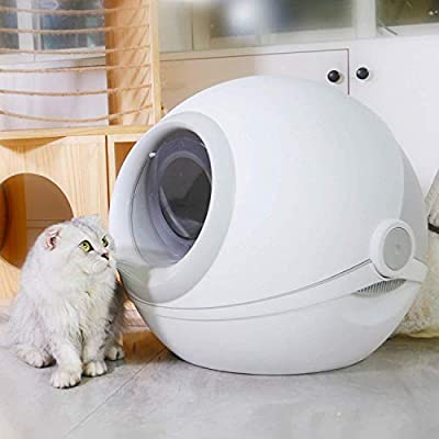 Caja De Arena para Gatos, Arena para Gatos Suministros Gatos Inodoro Mascotas Bolsa Casa Pala de plástico Caja de Arena para Gatos Recinto Cerrador,Gris: Amazon.es: Hogar