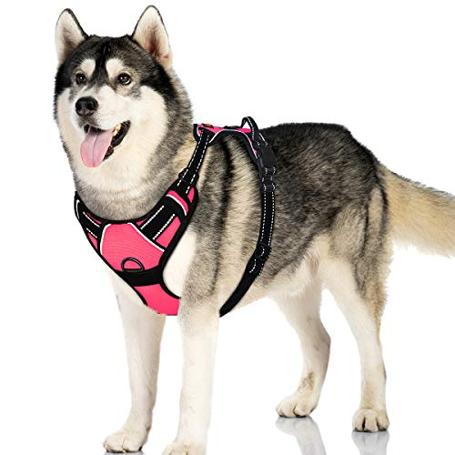IPETSZOO No Pull Dog Harness for Large Dogs with Handle Adju