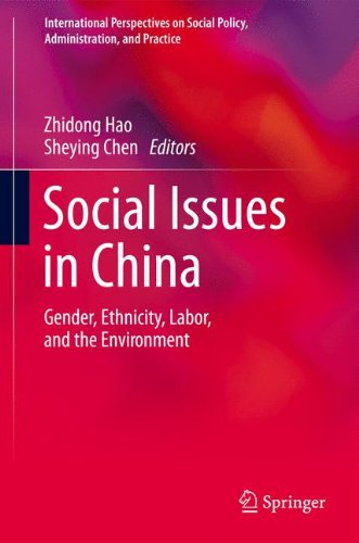 Social Issues in China: Gender, Ethnicity, Labor, and the Environment (International Perspectives on Social Policy, Admi