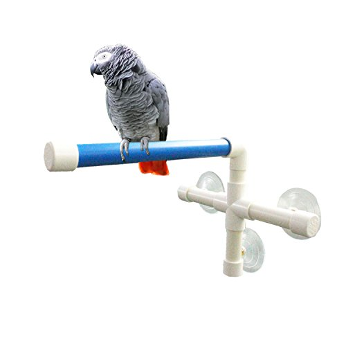 Qulable Shower Bird Perch Toy Suction Cup Parrot Creative Fold Away Window Stand for Medium to Large Birds