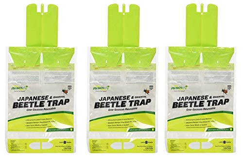 RESCUE! Reusable Japanese/Oriental Beetle Trap (3 PACK)