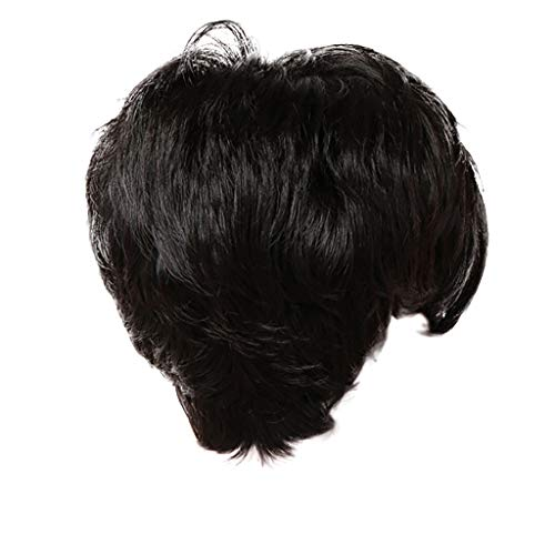 - Mome Short Wavy Synthetic Short Wigs Wavy Cute Summer Pixie Black Wigs for Women Natural Short Hair Wigs Dairy Wigs (25cm, Black)