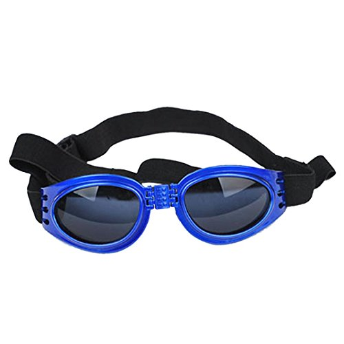DDLBiz Water Proof Sunglasses Protection Goggles