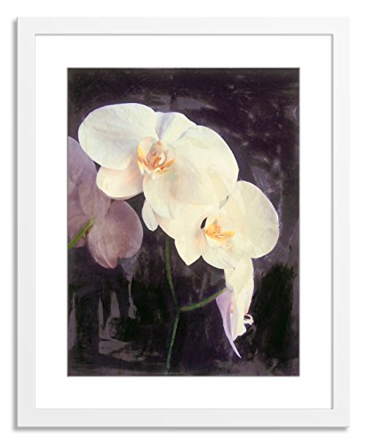 Gallery Direct Midnight Garden II Artwork on Paper, Wood by Sara Abbott with White, Clean and Simple Frame, 36