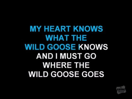 Cry Of The Wild Goose
