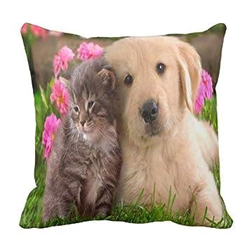 Mejoras para el hogar Funda de Almohada Perros y Gatos Lindos Tome el diseño de fotografías para el sofá ...