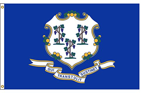 Connecticut 3ftx5ft Nylon State Flag 3x5 Made In USA 3'x5' (Connecticut State Flag)