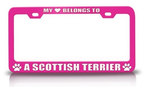 Tollyee My Heart Belongs to A Scottish Terrier Pet Cats Dogs Metal License Plate Frame Pink ()