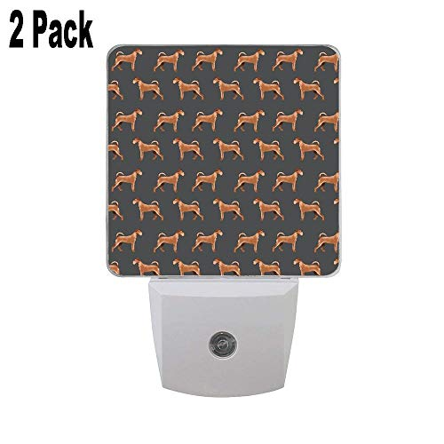 Irish Terrier Dog Breed Pet Pattern Dog Art Terriers Portrait 2PCs Plug in Night Light, LED Night Lights Dusk to Dawn Sensor Home Decor Desk Lamp for Adult Kids for Bedroom Bathroom Hallway and More