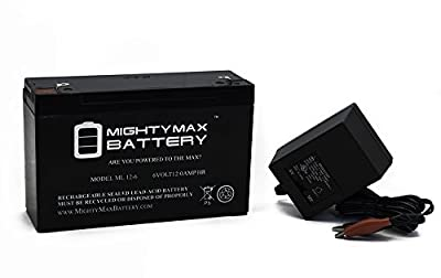 ML12-6 .250TT - 6 VOLT 12 AH SLA BATTERY INCLUDES 6V CHARGER - Mighty Max Battery brand product