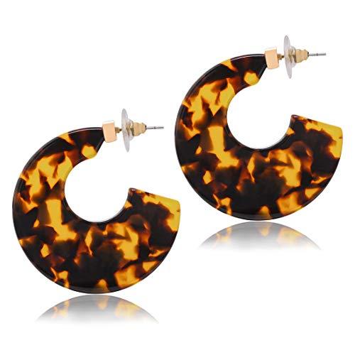 Lucite Pierced Earrings (Acrylic Hoop Earrings Upgraded Statement Circle Flat Resin Earrings Acetate Geometric Stud Earrings for Women (A Dark Brown))
