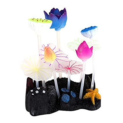 Amazon.com : eDealMax Ornamento de la planta de agua acuario Paisaje Artificial Brillante de Coral : Pet Supplies