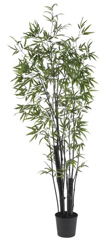 Black Bamboo Tree - Nearly Natural 5164 Black Bamboo Silk Tree with Thick Trunks, 6-Feet, Green