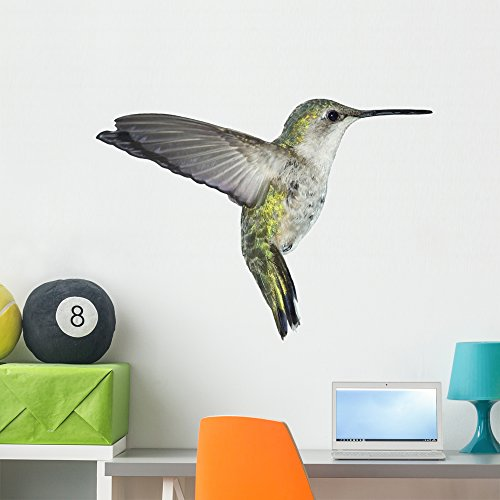 Wallmonkeys Flying Ruby-throated Hummingbird Wall Decal Peel Stick Animal Graphics (36 in H x 36 in W) WM7887
