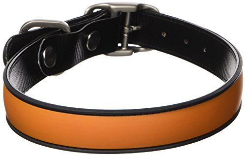 All Style 17-Inch by 21-1/2-Inch No Stink Dog Collar, Large, Hunter Orange
