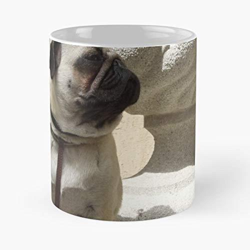 Pugs Bellagio Italy Coffee Mugs Unique Ceramic Novelty Cup