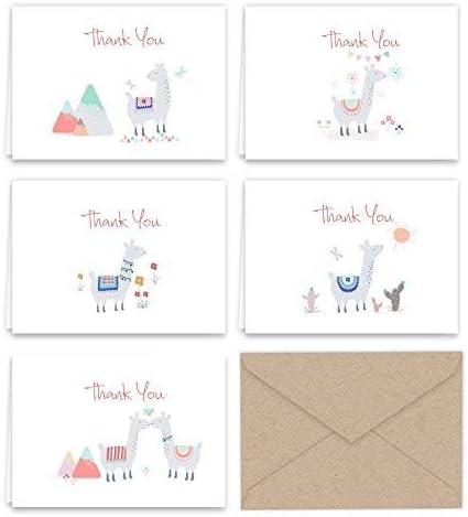 Amazon.com: PaperFrenzy Llama - Tarjetas de agradecimiento y ...