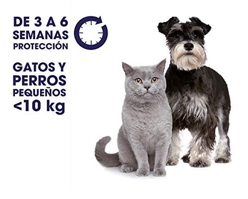 Zotal Veterinaria Parasital Pipeta Antiparasitario Perros Peq Y Gato - 1 unidad