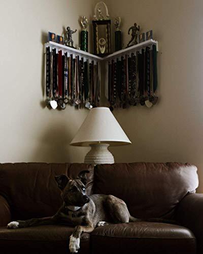 Premier 2ft Award Medal Display Rack and Trophy Shelf by MedalAwardsRack (Image #3)