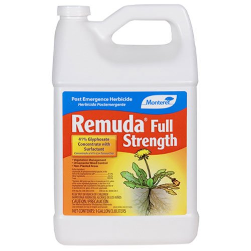 Concentrate Strength - Monterey Remuda Concentrate 128oz