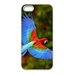 Customized case Of Parrot Hard Case for iPhone 5,5S
