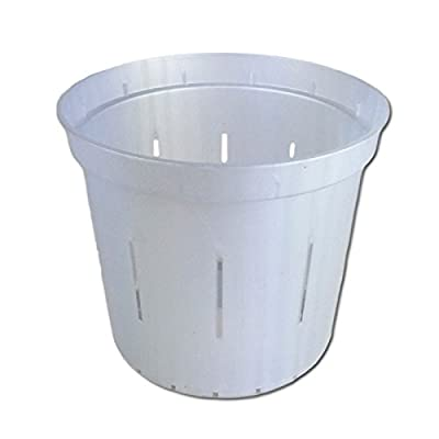 """5"""" Slotted Clear Orchid Pots - 3 Pack (White Pearl): Garden & Outdoor"""