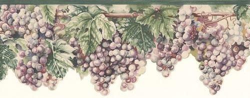Blue Mountain Wine Grapes on Vine Wallpaper Border - Tusc...