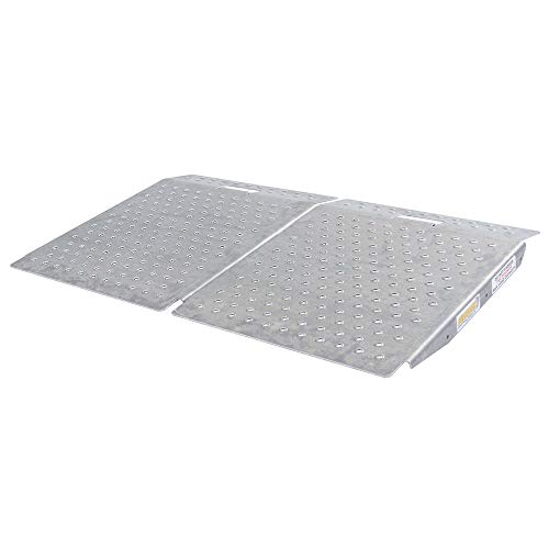 (Guardian SR-01-24-24-P-TS6-2 Shed Ramps with Punch Plate Surface-2Pack, 2 Pack)