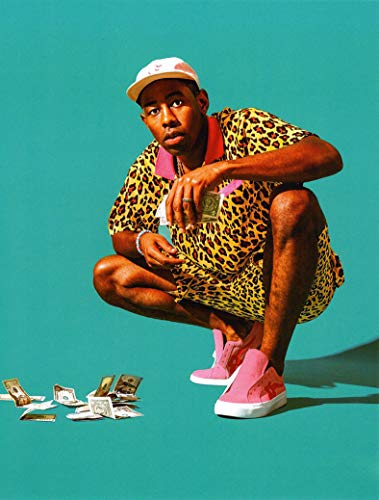 bribase shop Tyler the Creator Music Star poster 17 inch x 13 inch