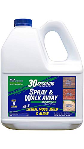 30 SECONDS Cleaners 1GSAWA 2PA Spray & Walk Away Cleaner, 1 Gallon - Concentrate (Pack of 2)