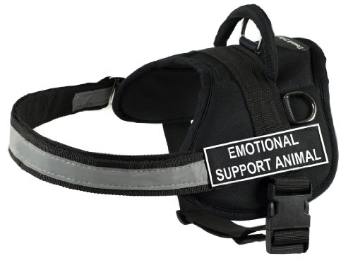 dean and tyler harness small - 9