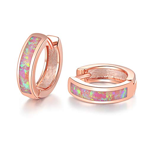 CiNily Huggie Earrings Hinged Plated product image