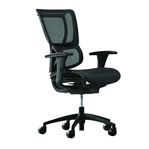 Staples Professional Series 1500TM Mesh Chair by Staples