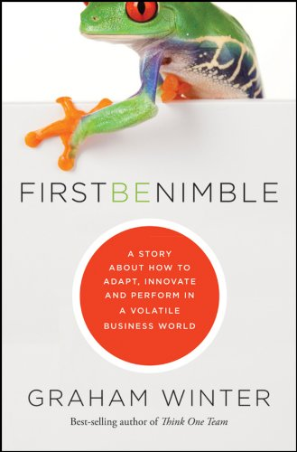 First Be Nimble: A Story About How to Adapt, Innovate and Perform in a Volatile Business World PDF