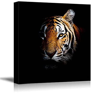 Tiger Head On Black Background - Canvas Art