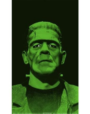 WOWindow Posters Frankenstein's Monster Scary Halloween Window Decoration 34.5