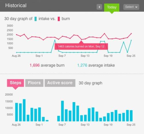 Amazon Fitbit Wireless Activitysleep Tracker Blackblue