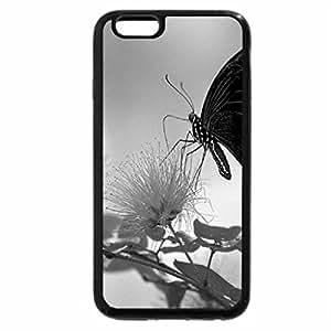 iPhone 6S Plus Case, iPhone 6 Plus Case, Black winged beauty