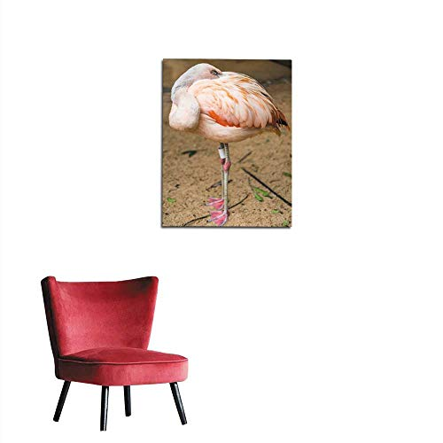 longbuyer Photographic Wallpaper Close up of a Flamingo Exotic Tropical Rare Bird Wildlife Animal in its Natural Environment Mural 24