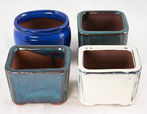 (4 Assorted Mini Pots for Mame Shohin Bonsai/Succulent & Accent Plants)