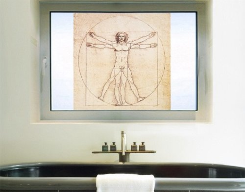 Window Mural Da Vinci window sticker window film window tattoo glass sticker window art window décor window decoration Dimensions: 56.7 x 56.7 inches by PPS. Imaging