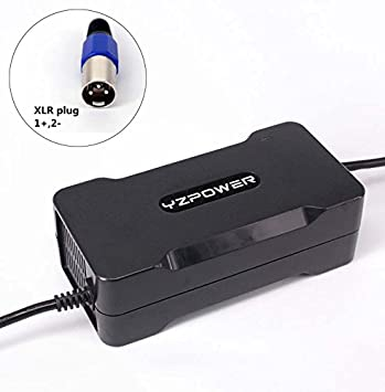YZPOWER 29.4V 5A Cargador de batería de Litio para 7S 24V Batería de Iones de Litio Herramienta eléctrica con Enchufe XLR: Amazon.es: Deportes y aire libre
