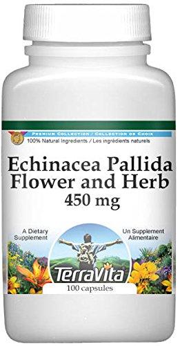 Echinacea Pallida Flower and Herb - 450 mg (100 Capsules, ZIN: 510915)